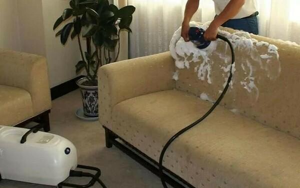Способы убрать запах кошачьей мочи с дивана