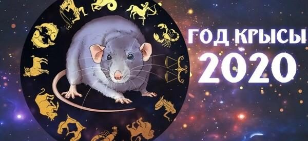 Что принесет 2020-ый год Крысы знакам Зодиака